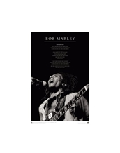 Iron Lion-Bob Marley Music Posters