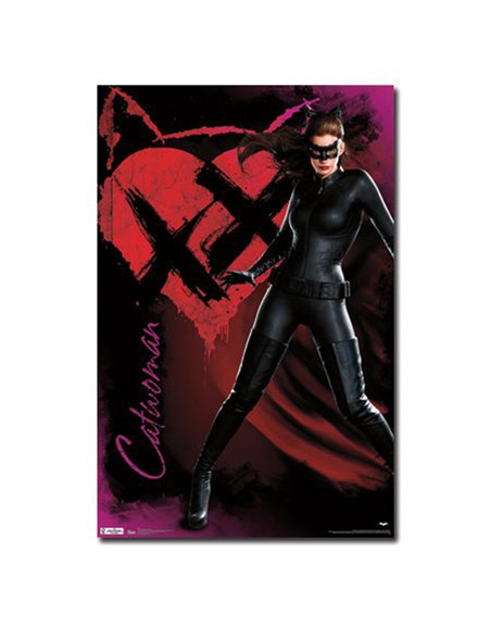 Catwoman Dark Knight Rises Post