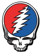 Steal Your Face Chunky Magnet
