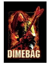 Dimebag Fire